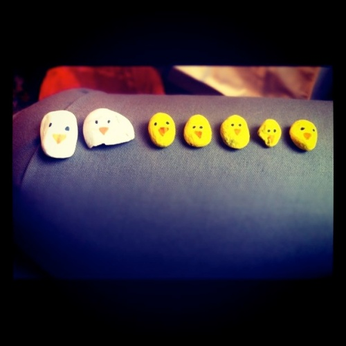 Painting pebbles: Five Little Ducks